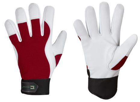 *CARVER* ELYSEE® NAPPA LEATHER GLOVES